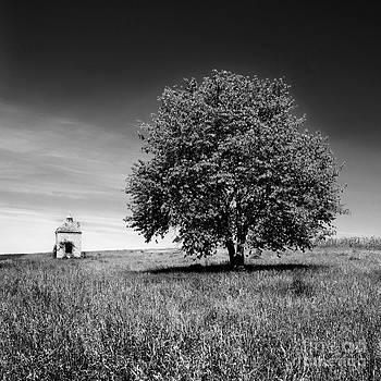 BERNARD JAUBERT - Dovecote. Auvergne. France