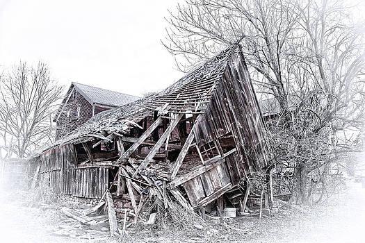 Landscapes- Farm- Down But Not Out-Yet by Feryal Faye Berber