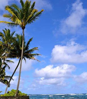 Down by the ocean in Hawaii by Lehua Pekelo-Stearns