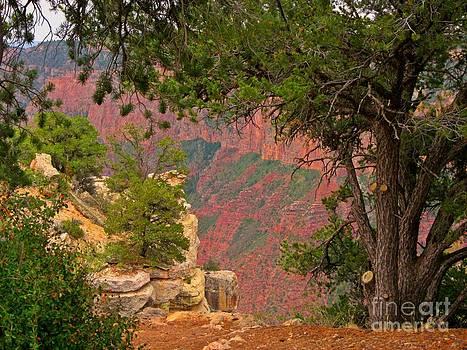 John Malone - Down into the Grand Canyon