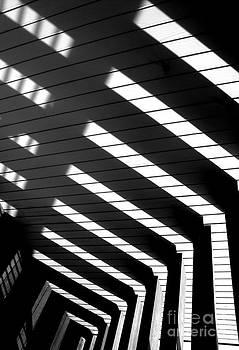 Down Stairs by Robert Riordan