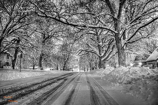 Down The Lane by Dan Crosby