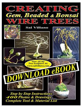 DOWNLOAD eBook by Sal Villano
