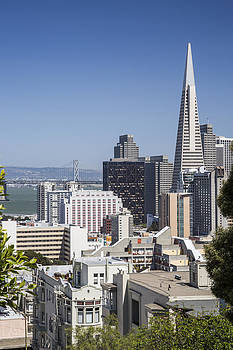 Adam Romanowicz - Downtown San Francisco