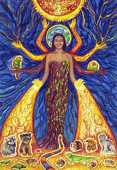Dr. Seema's Healing Hands by Jennifer Turnbull