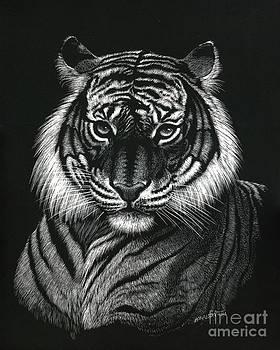 Dragon Tiger by Stanley Morrison