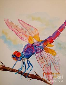 Dragonfly by Bonnie Schallermeir