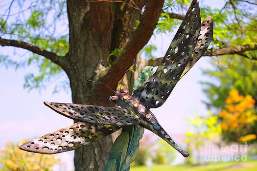 Corey Ford - Dragonfly Garden Ornament