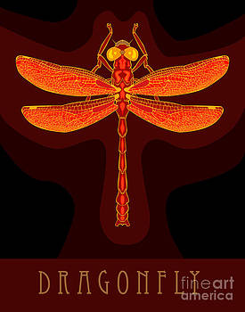 Dragonfly number two by Patrick Collins
