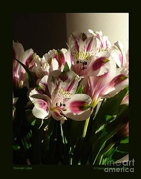 Dramatic Lilies by Patricia Overmoyer