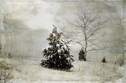 Julie Palencia - Dread of Winter
