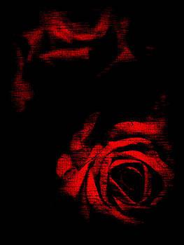 Susan Maxwell Schmidt - Dread Roses