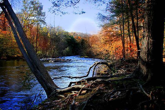 Dream River by Mark Ashkenazi