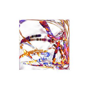 Stefan Kuhn - Dreaming Colors