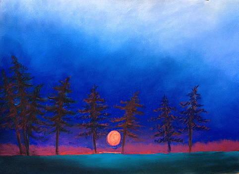 Dreaming by Karin Eisermann