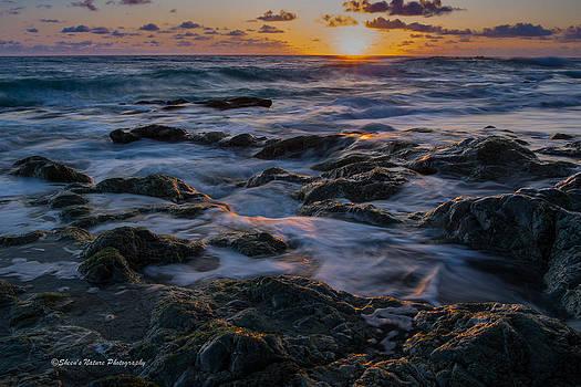 Dreaming of Costa Rica II by Sheen Watkins