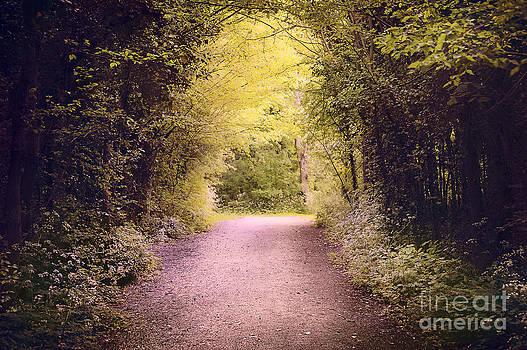 Svetlana Sewell - Dreamy Path