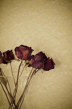 Dried red roses by Bernice Williams