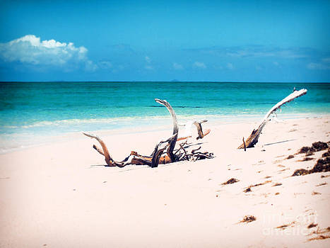 Drift into Paradise by Karen Lewis