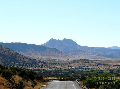 Driving Through Big Bend by Avis  Noelle