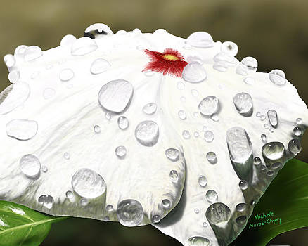 Droplets on Bloom by Michelle Moroz-Chymy
