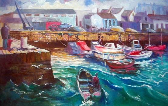 Dublin Ireland Bullock Harbour by Paul Weerasekera