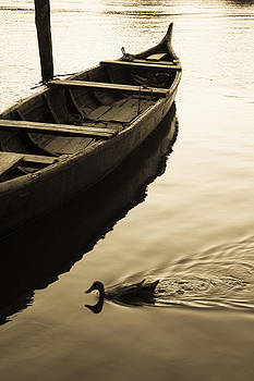 Duck and Boat by Sonny Marcyan