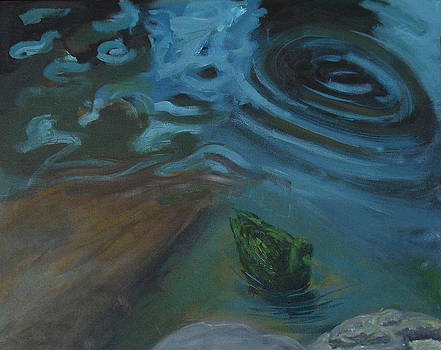 Duck Calm by John Stalder