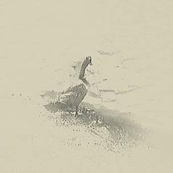 Duck Esser by  Renee McDaniel