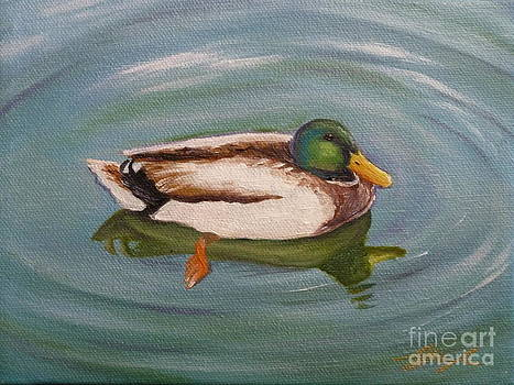 Duck by Gayle Utter