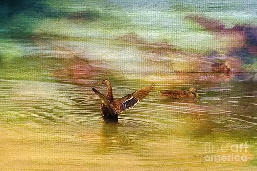 Deborah Benoit - Duck Paradise