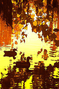 Amy Vangsgard - Ducks on Red Lake B