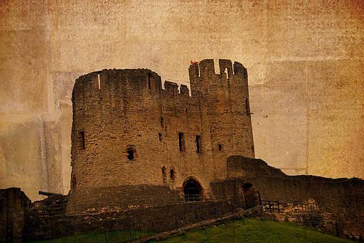 Dudley castle by Nadeesha Jayamanne