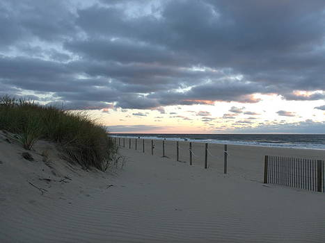 Dune at Sunrise by Terrilee Walton-Smith