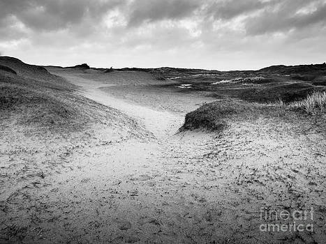 Dune Valley by David Hanlon
