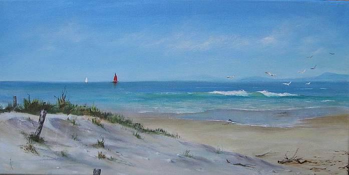 Dunes by Rita Palm
