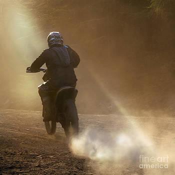 Angel  Tarantella - dusk and dust