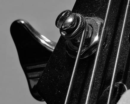 Dusty Bass by Todd Soderstrom
