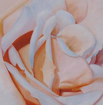 Dusty Rose by William Killen