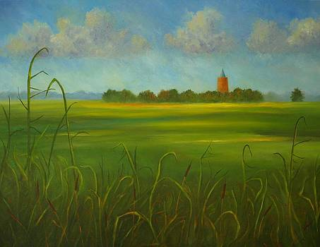Dutch landscape by Andries Hartholt