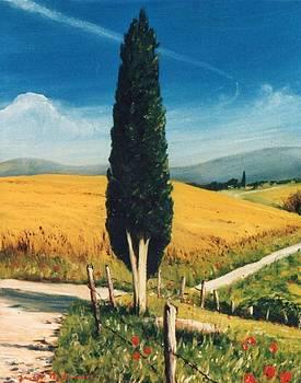 ..e La Strada Si Apre by Sandro  Mulinacci