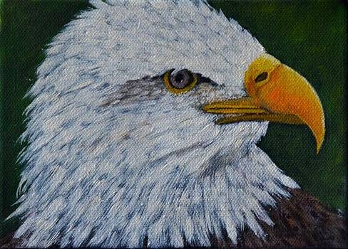 Eagle by Marsha Thornton