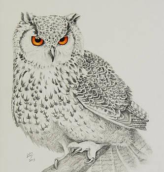 Eagle Owl by Katharine Green