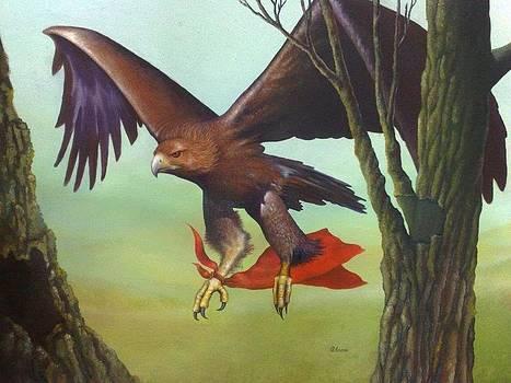Eagle by Qendrim Azemi