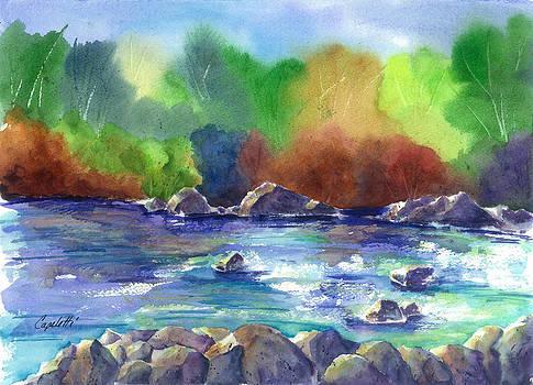 Eagle River Avon Colorado by Barb Capeletti