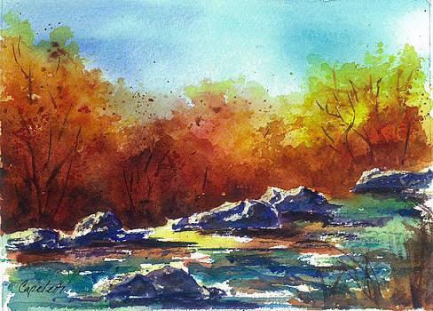 Eagle River Colorado Seasons Fall by Barb Capeletti
