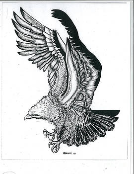 Eagle by Valerie Vanorden