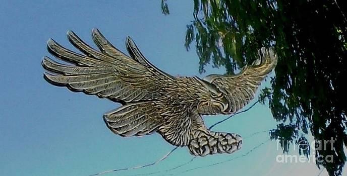 Gail Matthews - Eagle View