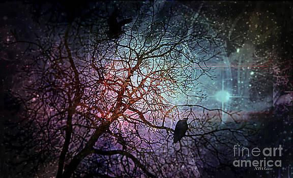 Eagles Amongst Us by Nancy TeWinkel Lauren