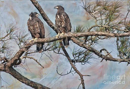 Deborah Benoit - Eaglets in Oil